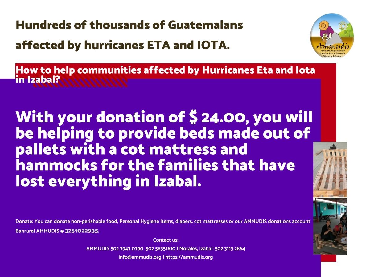 Ammudis banner ETA IOTA Donación